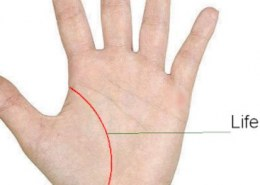 How to see age from life line in palmistry