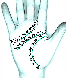 Marriage age prediction in palmistry