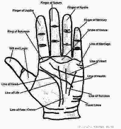 Career Prediction In Palmistry - astrosanhita