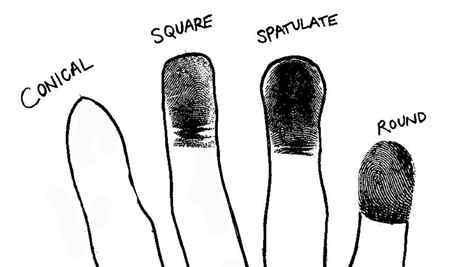 fingers astrosanhita palmistry-compressed